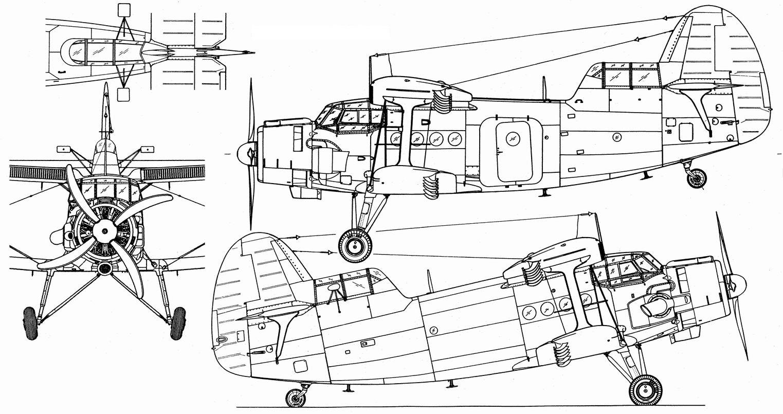 An-6_-Shema.jpg